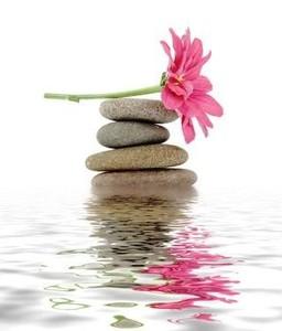 zen-fleur-eau-normal.jpg